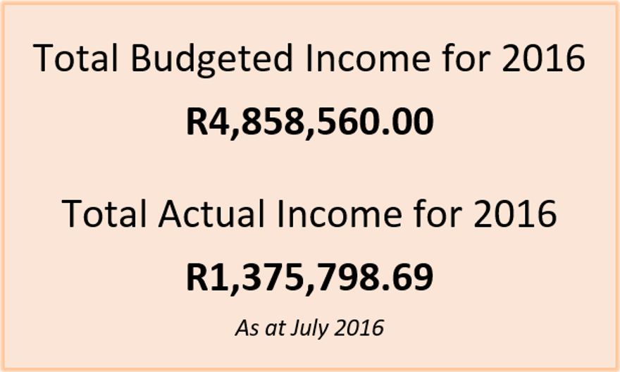 http://raysofhope.co.za/wp-content/uploads/2012/01/Budget-July.png